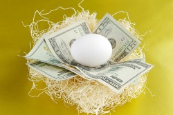 nest egg. money and an egg in a nest to represent retirement or savings